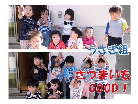 八幡保育園(福井市)うさぎ組(1歳児)がサツマイモ堀にチャレンジ!型抜きあそびも楽しいね!2016年10月