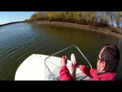 рыбалка в гремучем астраханской области видео 2016
