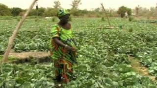 Vidéo de la Journée mondiale de l'alimentation 2010