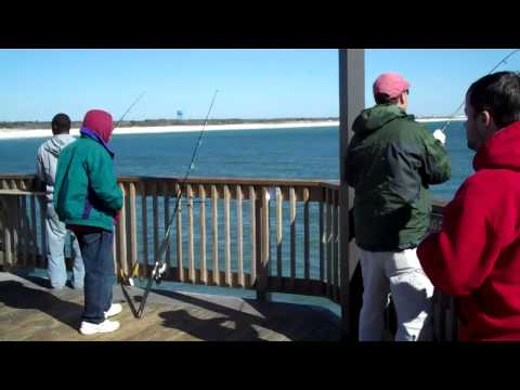 SHARK CAUGHT OFF ALABAMA PIER.mp4