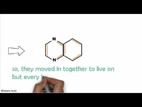 pyrazinamide sythesis