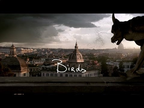 birds - From the album 'Sad Singalong Songs', in stores now! iTunes: http://smarturl.it/SadSingalongSongs (P) 2013 The copyright in this audiovisual recording is own...