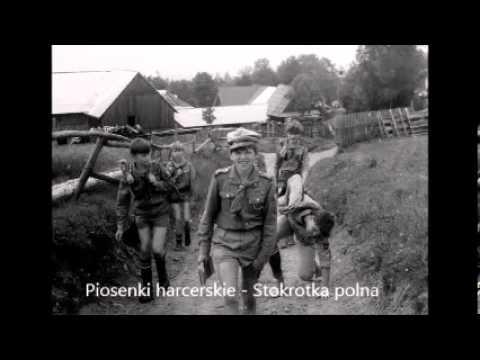 Harcerska - Stokrotka lyrics