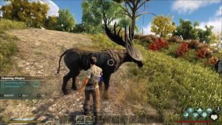 Vídeo gameplay do jogo Dark and Light em português PT BR, disponível para PC via Download na Steam. Site Oficial:...