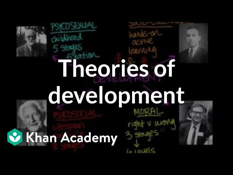 individuals theories Causal theories of individual differences are being developed but are in a much earlier stage than are the descriptive taxonomies descriptive taxonomies are used to organize the results of studies that examine genetic bases of individual differences.
