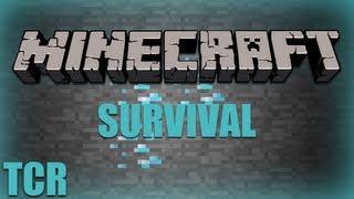 Minecraft - YELLOW SHEEP - Ep. 35