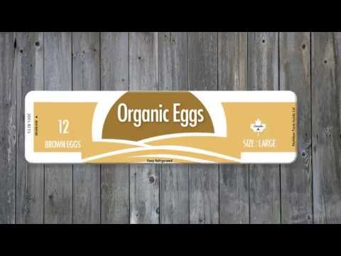 Buying Eggs
