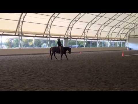 Habits of a Horseman- Flying Lead Changes