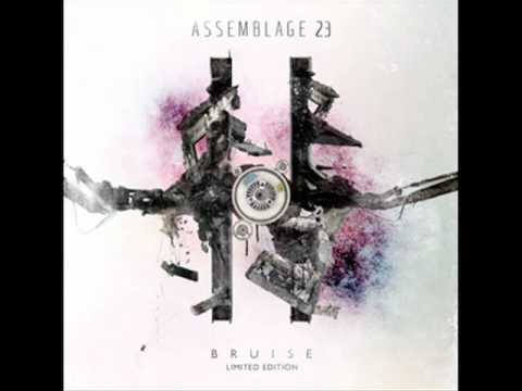 Assemblage 23- The Last Mistake