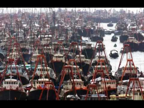 World Ocean Video: Industrial Fishing