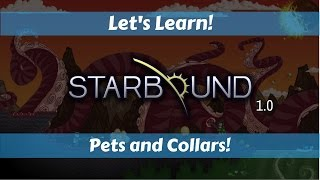 This Let's Learn explains how to collect, heal, tether and enhance your pets. It also showcases all of the collars you can collect in...