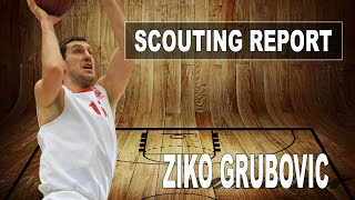 Zivojin Grubovic Highlights 2015-16