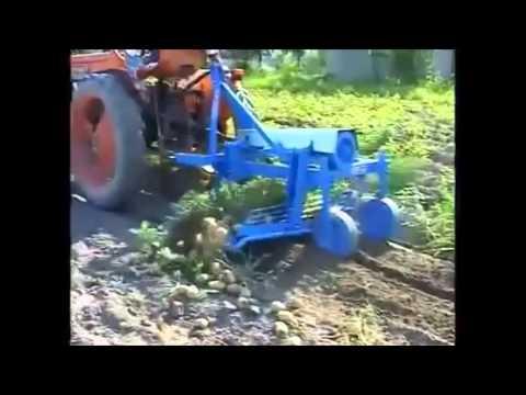 Arracheuse de pomme de terre