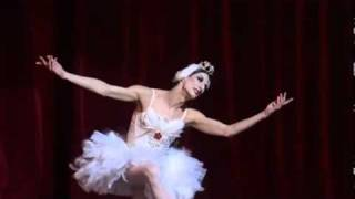 My Favorite version of the Dying Swan