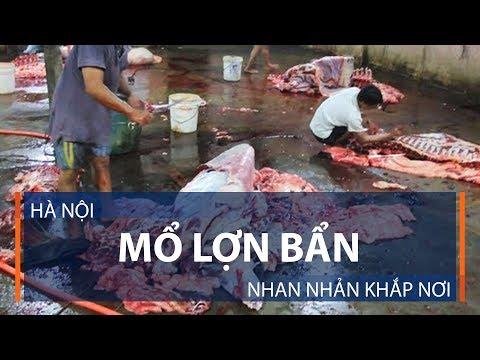 Hà Nội: Mổ lợn bẩn nhan nhản khắp nơi | VTC1 - Thời lượng: 4 phút, 3 giây.