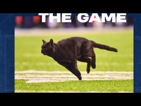 Fear The Black Cat! The Cowboys Are Ready For The Next Half Of The Season!