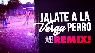 Jalate a la verga perro  REMIX 2017