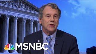 Mitch McConnell Knows Better, Says Senator | Morning Joe | MSNBC