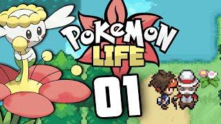 Pokémon Life Version | Episode 1 - Origins by Munching Orange