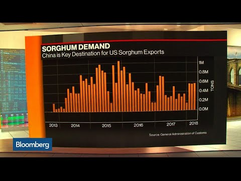 China Scraps Probe Into Near $1 Billion U.S. Sorghum Imports