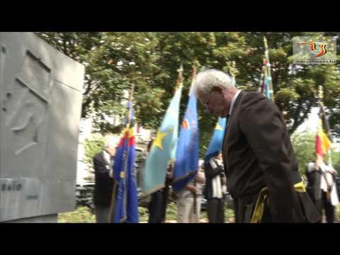 Commémoration en l'honneur des troupes africaines.