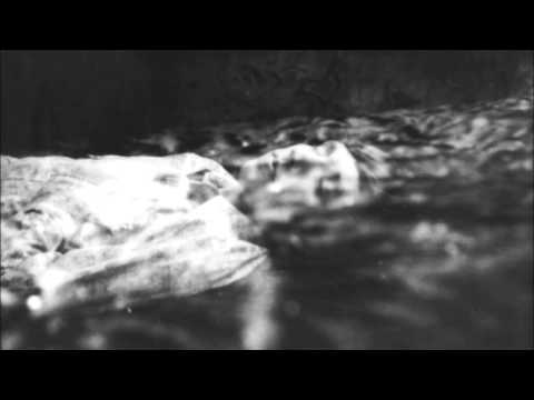 Sizzlebird - Falling Into Daydream