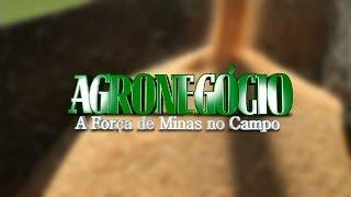 VÍDEO: Agência Minas inicia uma série especial sobre a potencialidade do agronegócio no Estado