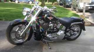 4. 2006 Harley Davidson Fatboy Show Bike For Sale~Lots of Extras~Arlen Ness~Performance Machine