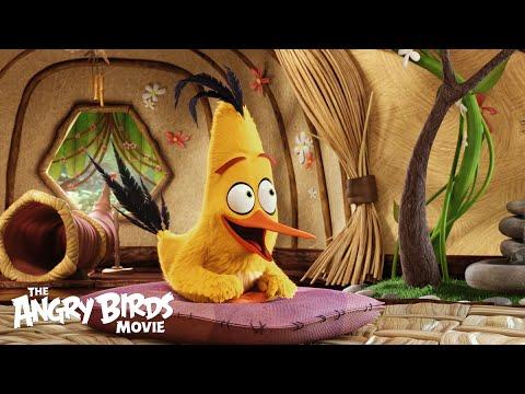 Angry Birds (Character Spot 'Meet Chuck')