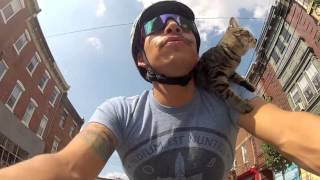 This Cat Love To Ride