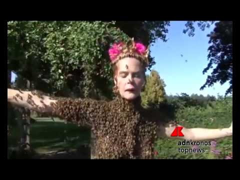 chi ha paura delle api?