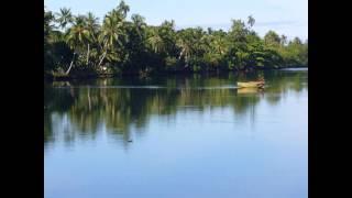 Па́пуа — Но́вая Гвине́я , полное название — Незави́симое Госуда́рство Па́пуа — Но́вая Гвине́я (англ....