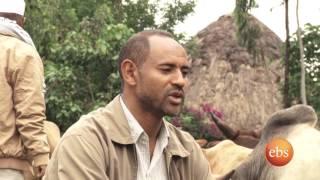 Ebs special Arefa celeberation in Kebena region part 1