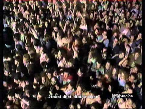 , title : 'Zucchero - Voodoo voodoo (Live 1995 + Intro)'