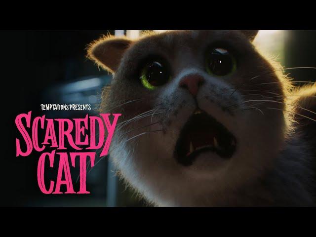 """""""Фильм ужасов"""" для котов собрал около 78 тысяч просмотров за пять дней"""