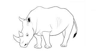 Видео: как нарисовать носорога поэтапно