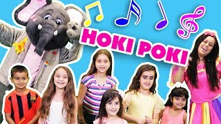 لولي وفلفول - هوكي بوكي - Hoki Poki 