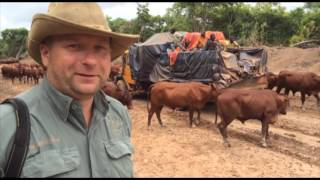 Wyprawa do Katangi w listopadzie 2015 roku / Short clip about Kongo 2015 expedition.