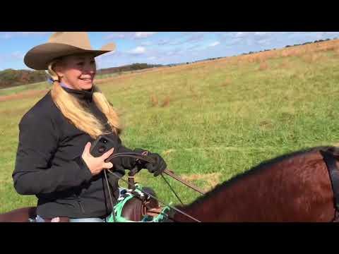 Gettysburg PA trail ride