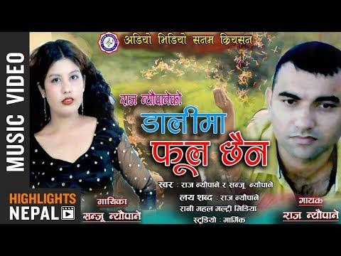 (Dali Ma Phool Chhaina - Nepali Lok Dohori Song 2075 | Raj Neupane & Sanju Neupane - Duration: 11 minutes.)