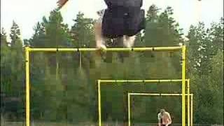 Impressive Hurdle Training