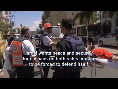 Netanyahu IDF Protective Edge Overview