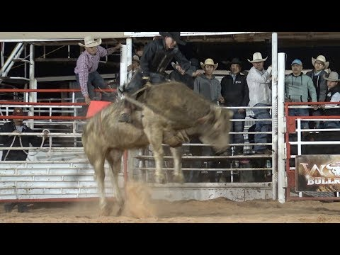 Video W.O.W Bull Riding download in MP3, 3GP, MP4, WEBM, AVI, FLV January 2017