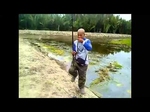Memancing ikan papuyu babon | mancing mania mantap