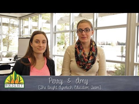 Getting Started with Classroom Hydroponics