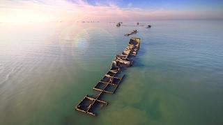 Le Port artificiel d'Arromanches (Vidéo)