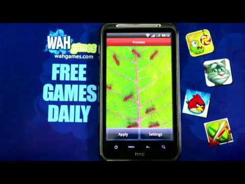 Video of Red ants free live wallpaper