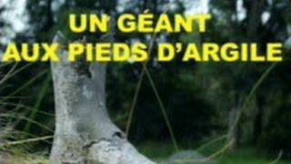 LE GÉANT AUX PIEDS D'ARGILE - 1/2