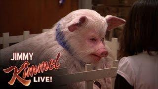 Video Jimmy the Pig MP3, 3GP, MP4, WEBM, AVI, FLV Maret 2018