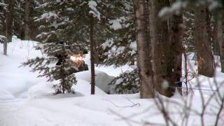 2. SnowTrax Rides SKi-Doo's 800R E-TEC MXZ X